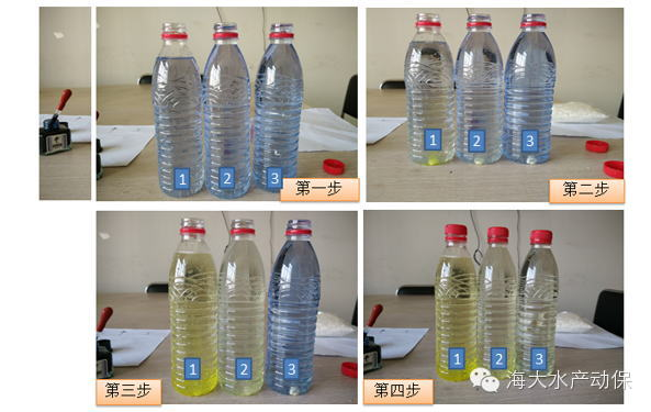 二氧化氯溶解实验-二氧化氯底泥氧化实验-色素疑云实验
