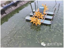 池塘亚硝酸盐高用生石灰_池塘亚硝酸盐正常值_养黄鳝泥鳅的池塘怎么建
