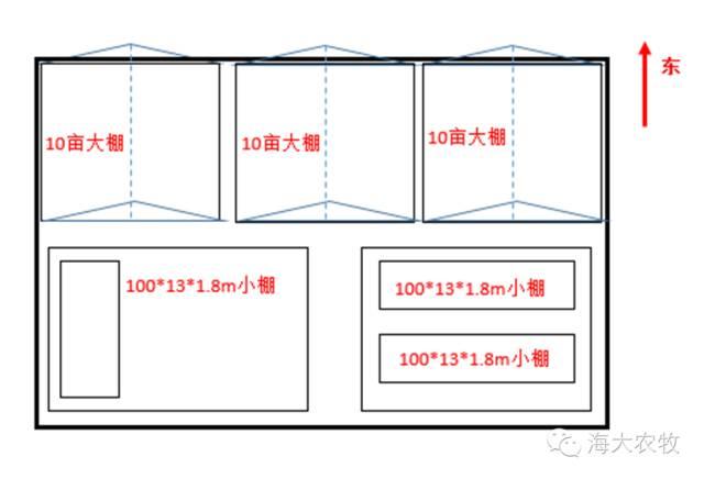 苏北医院内部结构图