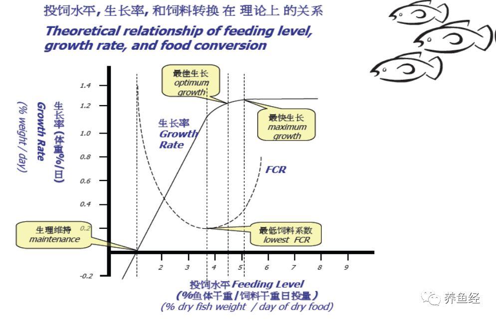 观赏鱼肠炎用什么药_肠炎能吃鱼吗_鱼肠炎能自愈吗