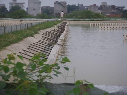 池塘规格,池塘结构