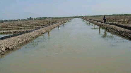 冬春季节小龙虾养殖池塘水质管理—如何肥水与防治
