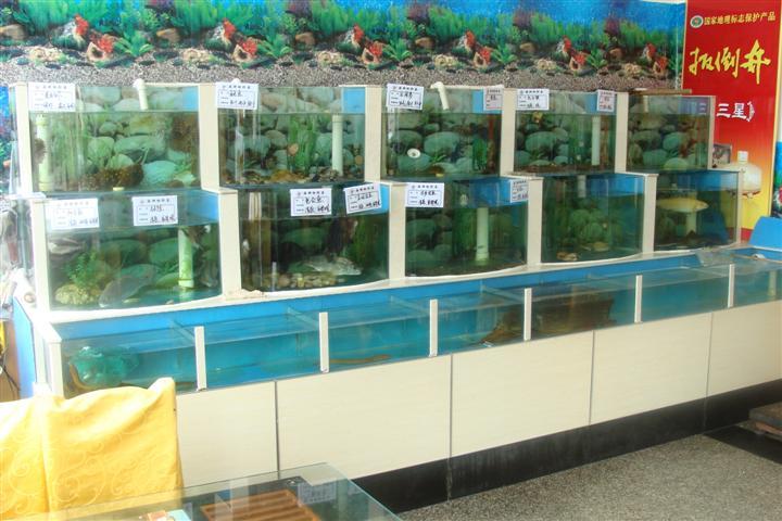 自动清洗鱼苗孵化桶_养殖设备价格