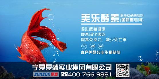 夏盛集团生物制剂(水产鱼虾蟹专用)