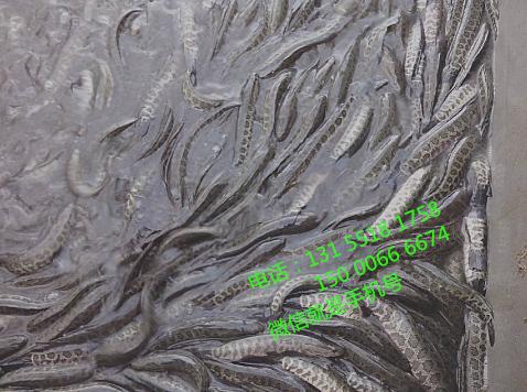 长期大量供应本地优质黑鱼苗(乌鳢),规格齐全