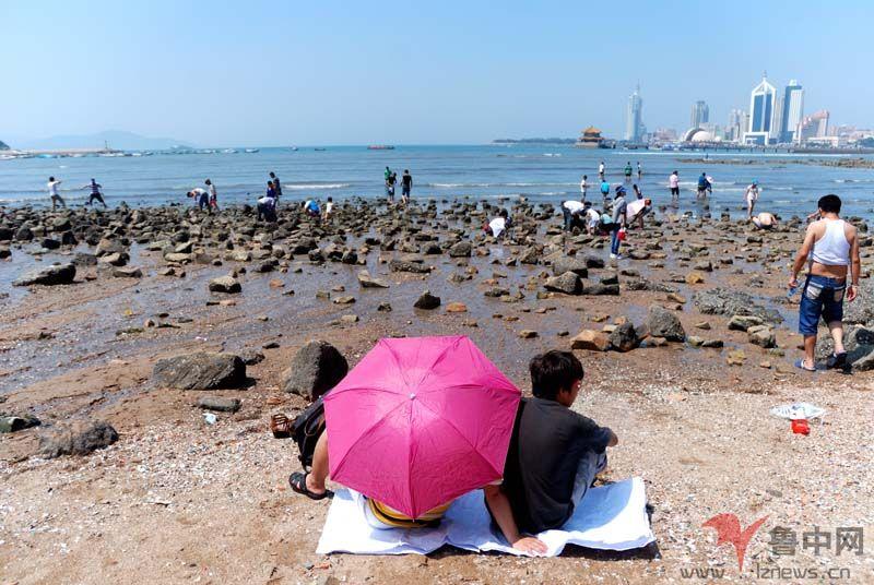 8月2日10:40许,青岛栈桥附近海边艳阳高照,一对男女撑着伞坐在海边