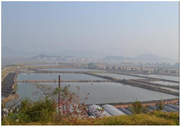 浙江坞根风景图片