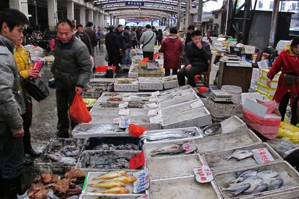2013蛇年春节期间上海水产市场扫描