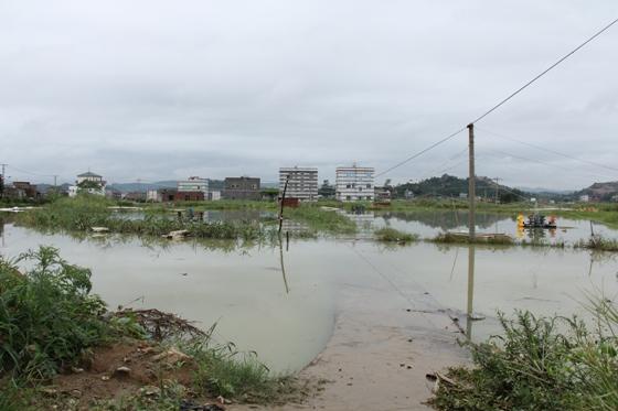 水产资讯 福建漳州市海洋渔业局紧    19日上午,漳州市海洋与渔业局