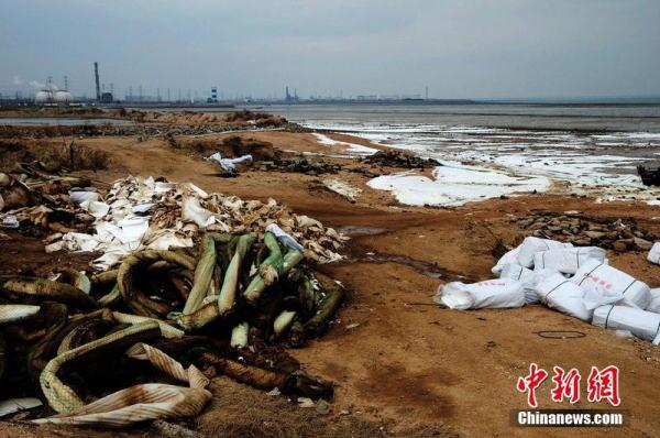 山东青岛爆燃事故附近养  12月21日,山东青岛开发区行人走在围挡围成