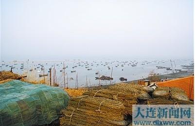 辽宁大连:普通渔农民贷款难 难在哪?