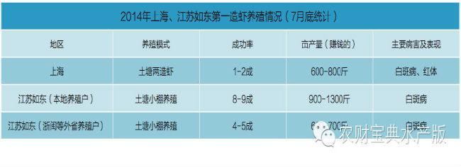 上海:早造虾成功率只有1-2成
