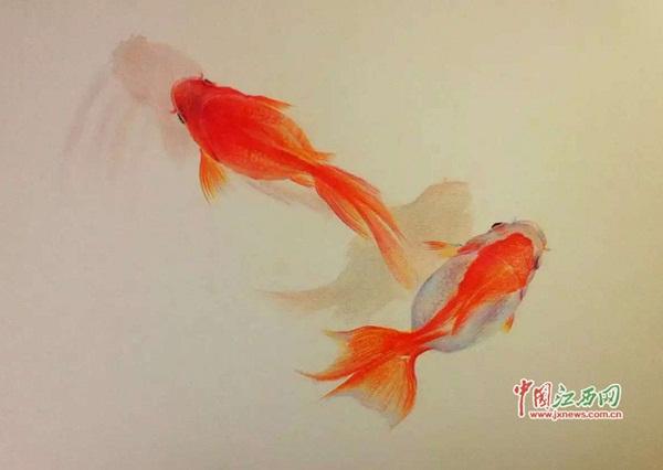 """一朵朵会游泳的花朵一般.""""-铅笔画出 真鱼 九江这个工科男有一手图片"""