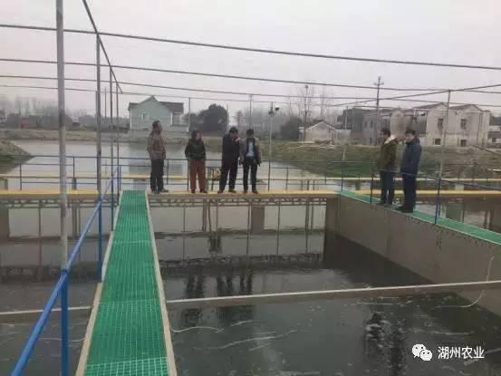 剿灭劣Ⅴ类水:这是水产养殖助力剿劣的正确打开方式!