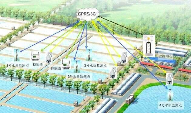 又现黑科技养鱼!这家水产养殖场与IT公司合作,大数据实时监控存塘量