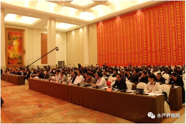 围绕生态、绿色、创新、品牌,探讨新时代中国龟鳖产业创新与发展
