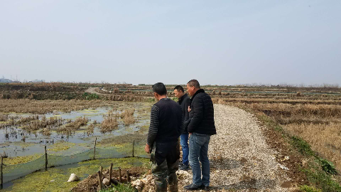 湖北潜江市积玉口镇创新实现高岭田虾稻种养模式