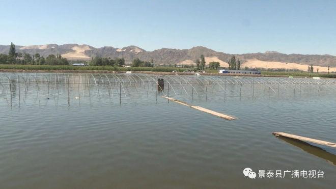 全国水产技术推广总站调研甘肃白银市景泰县盐碱地治理和水产养殖