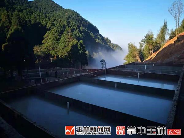 国营六万林场木马坳娃娃鱼养殖基地:知青追梦森林康养