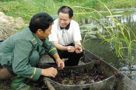 安徽宿松发展特色生态水产养殖