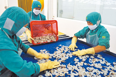 广东湛江检验检疫局对对虾出口企业进行帮扶
