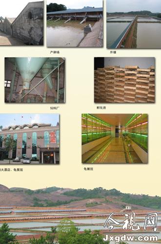 农村木工支模步骤图