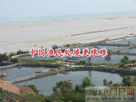 &nbsp&nbsp&nbsp&nbsp2009年广东湛江东海岛钢铁厂项目建设征地,牺牲