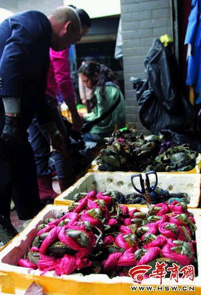 9月28日,曹女士在炭市街一家海鲜市场,想买几只螃蟹.