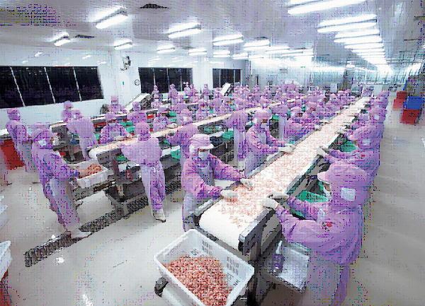对虾出口市场日渐难做 内销市场或是未来主方向
