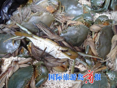 2月7日,他到三亚旅游,在一家海鲜排档吃螃蟹时发现这一大变化,真是太