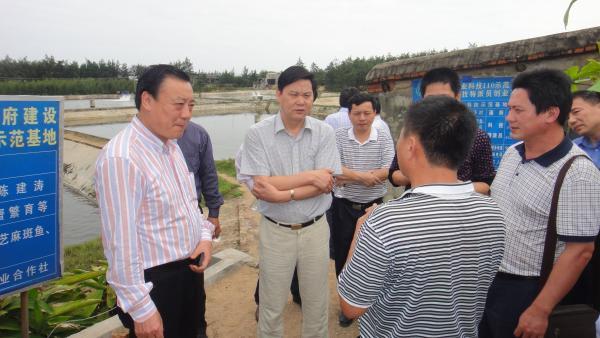 宁波市海洋与渔业局陈秀忠局长带队考察海南深水网箱养殖,白对虾与