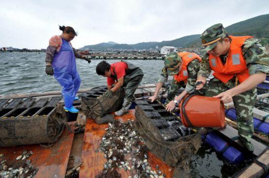 赤潮重创福建平潭鲍鱼养殖 损失超2亿