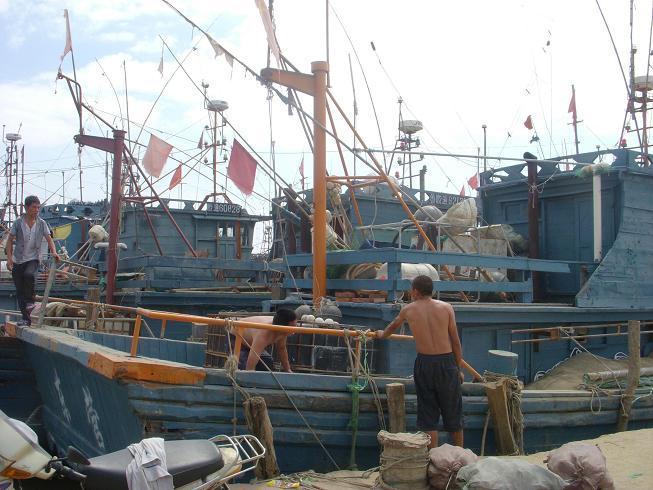 黄渤海伏季休渔即将结束,胶州市二百多艘渔船的渔民们开始忙碌起来,为开渔做准备。市海洋与渔业局工作人员加班加点帮助渔民查验各类证件、整修渔网和渔船,做好开渔前的各项准备工作。&nbsp&nbsp&nbsp&nbsp