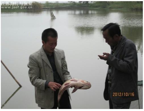 江苏徐州市铜山区利国镇渔业科技入户服务上门
