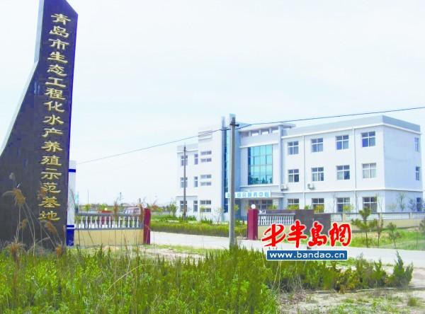 山东青岛胶南市七千亩滩涂变身水产养殖基地