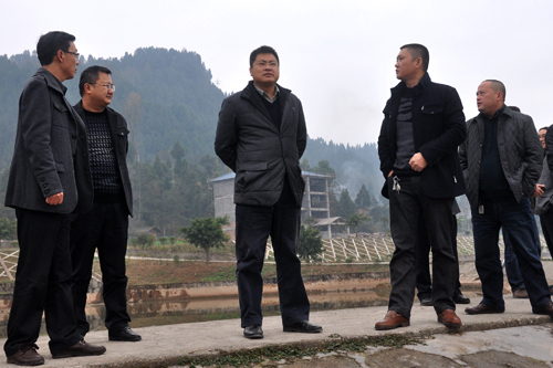 四川巴中:王军深入通江县铁佛镇平坝村调研水产业发展