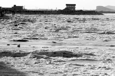 大连市周边海域结冰情况较严重海鲜价格噌噌涨