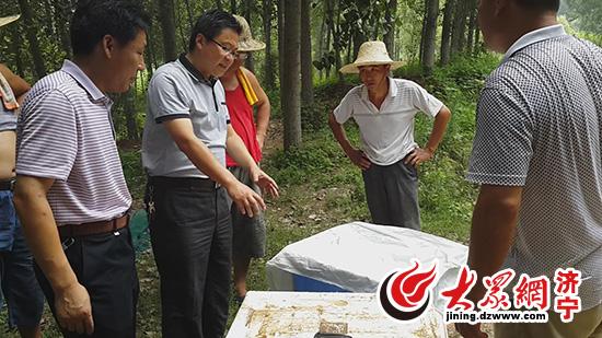 山东济宁微山县水蛭养殖基地建设进展顺利