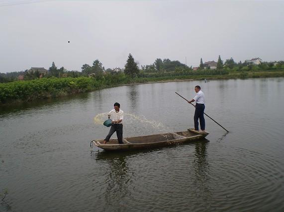 江苏南通海安县大公镇指导员