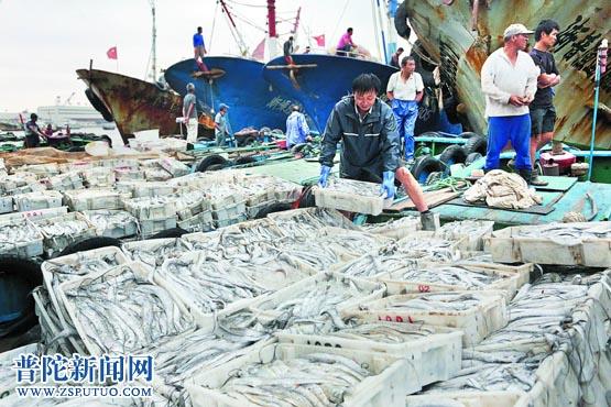 渔船拢洋鱼满仓 舟山国际水产城中沙头冰鲜交易区一片