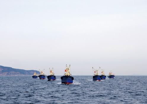 在獐子岛海洋牧场每日有20多条大马力虾夷扇贝捕捞船