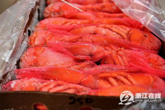 美洲螯龙虾首次登陆浙江宁波口岸 重15.9吨