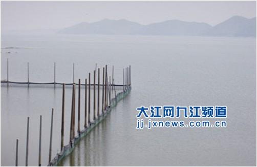 江西九江湖口南北港水产养殖场:因坝而起依水而兴