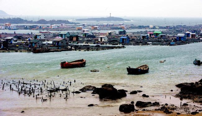 福建省海洋与渔业厅与赤潮赛跑为渔业减灾增收