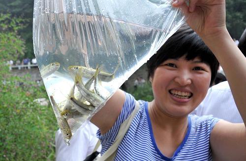 山东泰山螭霖鱼解决物种灭绝问题 年产将达百万