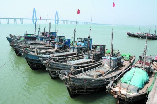 海鲜休产假乱捕要严查 山东青岛下月起休渔三个月