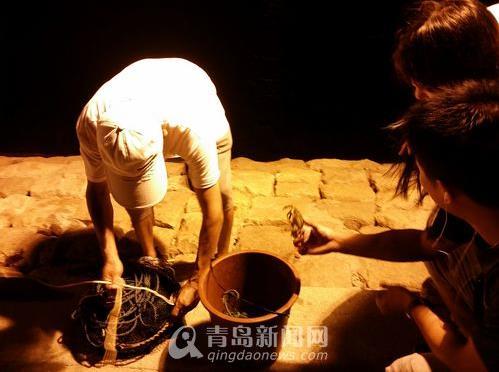 山东青岛野生石夹红扎堆靠岸 市民一晚上抓2斤