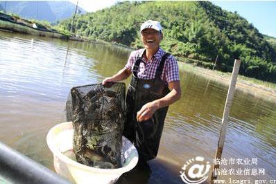 发展特色水产养殖业_湖南益阳市桃江县特色水产养殖业发展形势喜人