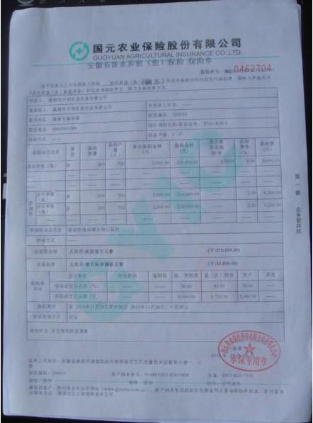 安徽省巢湖市淡水养殖(鱼)保险首单开出