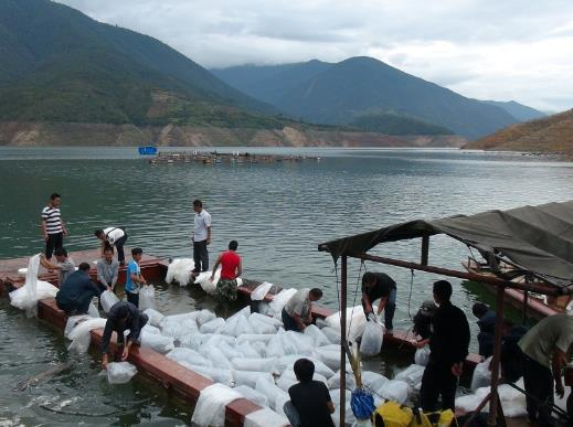 云南临沧市凤庆县确定渔业产业发展目标